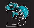 Bayside Bears