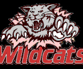 Taylor Wildcats